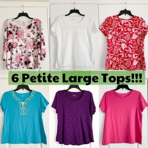 Bundle of 6 Petite Large PL Top & T-Shirts